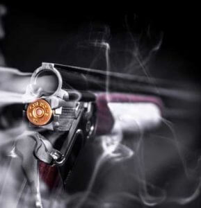 Hanseatic Moving Services - Firearms Information